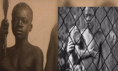بندروں کیساتھ سیاہ فام انسان کی نمائش، 114 سال بعد معافی