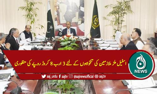 اسٹیل ملز ملازمین کی تنخواہوں کے لئے 3 ارب 8 کروڑ روپے کی منظوری