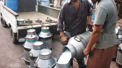 Karachi Dairy Farmers increase Milk price by Rs20 per liter