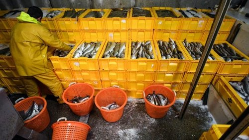 UK, EU and Norway agree deal on fishing quotas