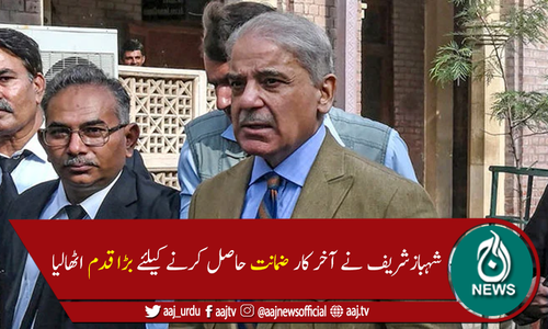 شہباز شریف نے ضمانت کیلئے لاہور ہائیکورٹ میں درخواست دائر کردی