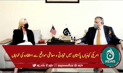 امریکی کمپنیاں پاکستان میں تجارتی و معاشی مواقع سے استفادہ کی خواہاں