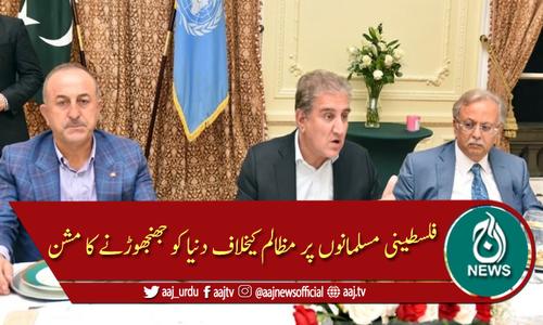 "پاکستانی وزیر خارجہ ""فلسطین امن مشن"" پر نیویارک پہنچ گئے"