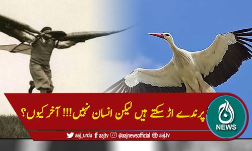 پرندے اڑ سکتے ہیں لیکن انسان نہیں!!! آخر کیوں؟