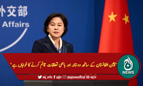 'چین افغانستان کے ساتھ دوستانہ اور باہمی تعلقات قائم کرنے کا خواہاں ہے'