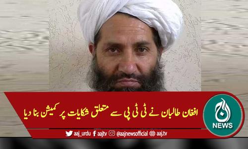 افغان طالبان نے ٹی ٹی پی سے متعلق شکایات پر کمیشن بنا دیا