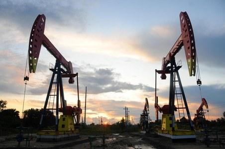 ADNOC awards Pakistani consortium exploration rights for offshore block