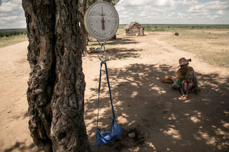 How climate change contributed to Madagascar's food crisis