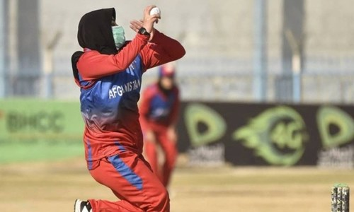 Afghan board committed to women's game, optimistic on Hobart test