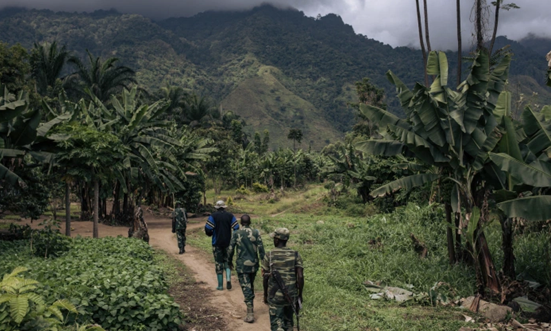 کانگو میں دہشتگردوں کا حملہ، 30 افراد قتل
