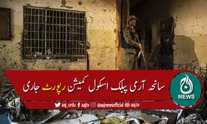 جوڈیشل انکوائری کمیشن نے سانحہ اے پی ایس کو سیکیورٹی کی ناکامی قراردے دیا