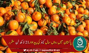 پاکستان سے کینو کی برآمد کیلئے ساڑھے 3 لاکھ ٹن کا ہدف مقرر