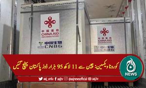 کورونا ویکسین: چین سے 11 لاکھ 95 ہزار ڈوز پاکستان پہنچ گئیں
