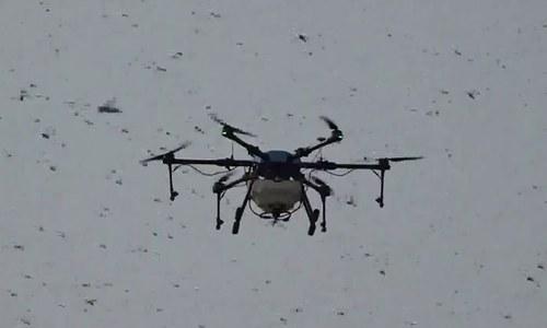 Pakistan-made drones to help battle locust swarms