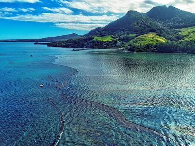 Sea life around Mauritius dying as Japanese ship oil spill spreads