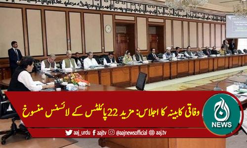 وفاقی کابینہ کا اجلاس: مزید 22پائلٹس کے لائسنس منسوخ