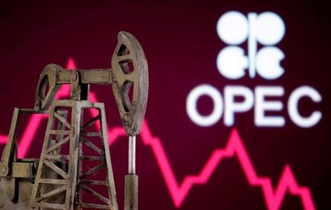 OPEC+ panel to meet amid oil price decline