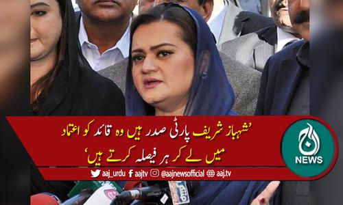 ایک نالائق اور کرپٹ ٹولہ پاکستان پر مسلط کیا گیا، مریم اورنگزیب