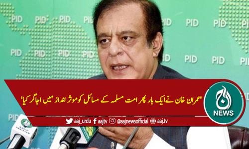'عمران خان نے پھر امت مسلمہ کے مسائل کوموثر انداز میں اجاگر کیا'