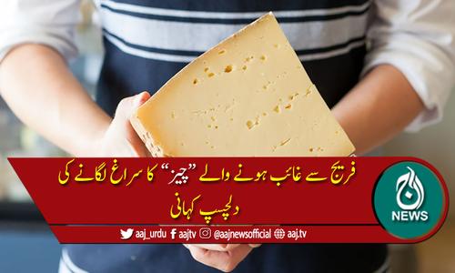 وہ کون تھا جو روز فریج سے پنیر چوری کررہا تھا۔۔۔؟