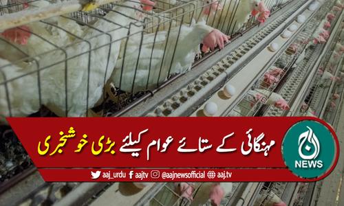 سردیوں میں انڈے اور مرغی کی قیمتوں میں مزید اضافہ نہیں ہوگا