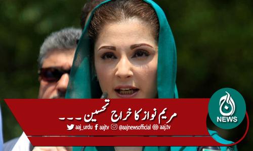 سندھ پولیس افسران کا چھٹیوں پر جانیکا فیصلہ، مریم کا خراج تحسین