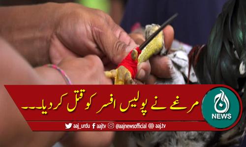 مرغے کے پنجے سے پولیس افسر ہلاک