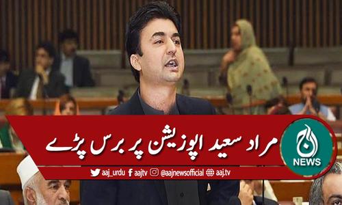 سینیٹ : مراد سعید کی اپوزیشن پر تنقید