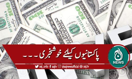 امریکا: پاکستان میں سرمایہ کاری کی نافذ حد کا خاتمہ