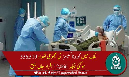 پاکستان میں کوروناسے مزید 40 ہلاکتیں، 1,008 نئے کیسز رپورٹ
