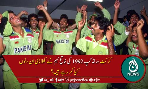 ورلڈکپ 1992 کی فاتح ٹیم ان دنوں کیا کر رہی ہے؟