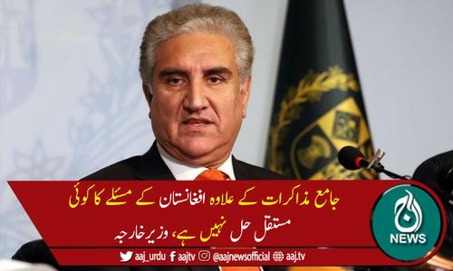 امن کیلئے پاکستان کی کوششیں دنیا جانتی ہے،شاہ محمود قریشی