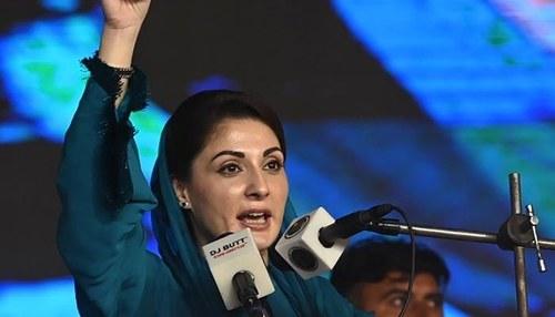 Maryam Nawaz's 'dictatorial attitude' behind PDM's split: PPP, ANP