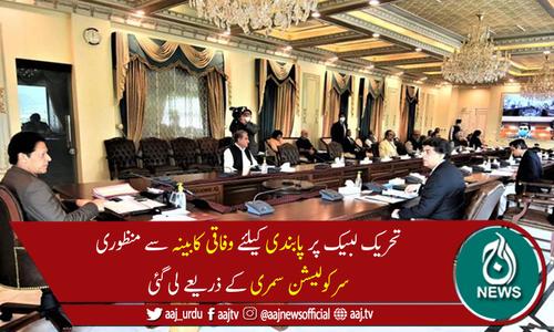 وفاقی کابینہ نے تحریک لبیک پاکستان پر پابندی کی منظوری دے دی
