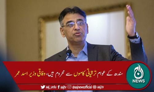 سندھ حکومت وفاق کے کاموں میں رکاوٹ ڈالتی ہے، اسد عمر