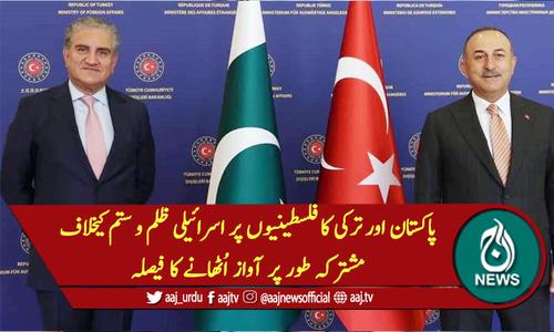 پاکستان اور ترکی کا فلسطینیوں پر اسرائیلی ظلم و ستم کیخلاف مشترکہ طور پر آواز اُٹھانے کا فیصلہ
