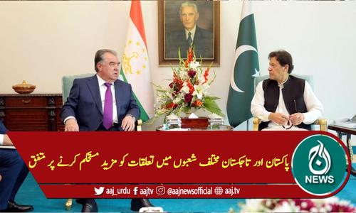 پاکستان اور تاجکستان مختلف شعبوں میں تعلقات کو مزید مستحکم کرنے پر متفق