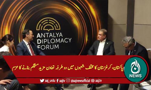 پاکستان، کرغزستان کا مختلف شعبوں میں دوطرفہ تعاون مزید مستحکم بنانے کا عزم