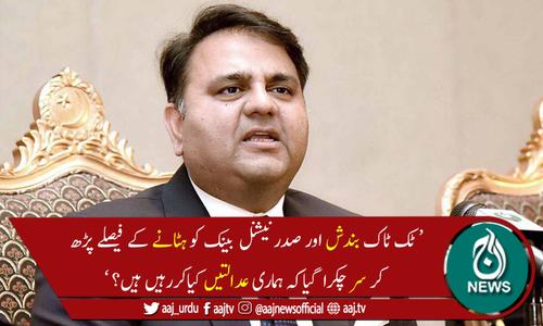 فواد چوہدری نے عدالتی فیصلوں پر تشویش کا اظہار کردیا