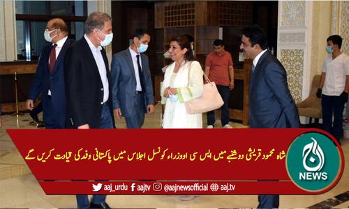 شاہ محمودقریشی دوشنبے میں ایس سی او وزراء کونسل اجلاس میں پاکستانی وفدکی قیادت کریں گے