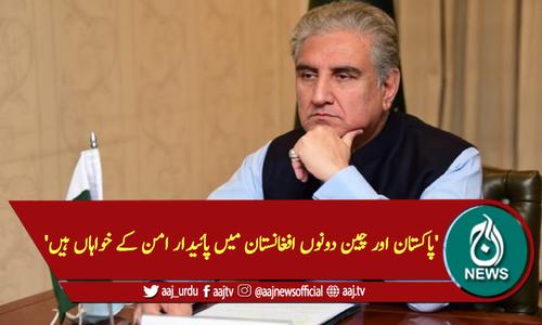 'پاکستان اور چین دونوں افغانستان میں پائیدار امن کے خواہاں ہیں'