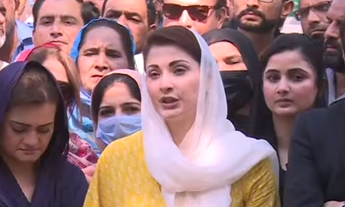 Govt levels allegations against those who expose its incompetence: Maryam
