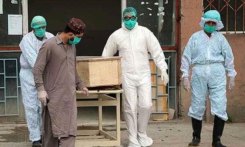 پاکستان میں کورونا سے مزید 50 اموات، جاں بحق افراد کی تعداد 27,482ہوگئی