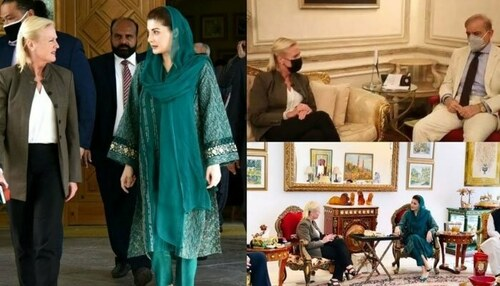 Does US envoy's separate meetings with Maryam, Shehbaz indicate party split?