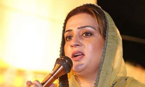 پنجاب : ڈینگی میں اضافہ ، صوبائی حکومت پر ذمےداری عائد