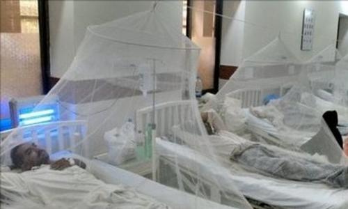پنجاب: ڈینگی، چوبیس گھنٹے میں چار سو دو نئے مریض رپورٹ