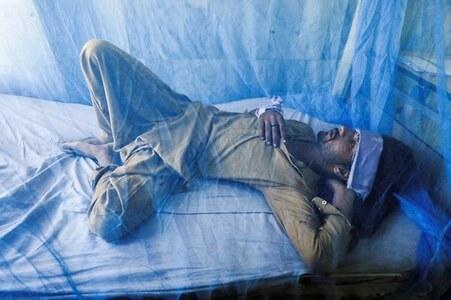 Punjab sees shocking rise in dengue cases