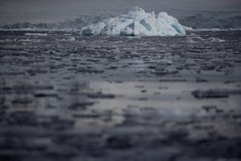 South Pole warmed three times the global rate in last 30 years: study