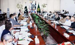 ECC approves Rs 29.72 bln for cash assistance under Ehsas Emergency Cash Programme