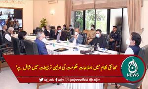 'اعانتی نظام میں اصلاحات حکومت کی اولین ترجیحات میں شامل ہے'